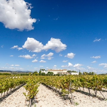 3 days through the wine route and the Penedès wine cellar with a campervan