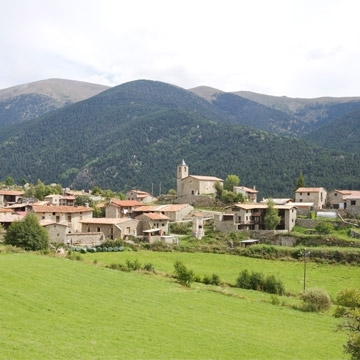 Route of the mushrooms through Cerdanya